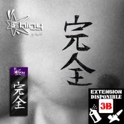 Pochoir Tatouage Temporaire SE Chinois 008