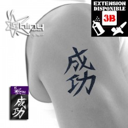 Pochoir Tatouage Temporaire SE Chinois 007