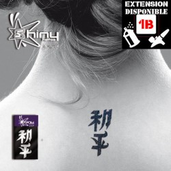 Pochoir Tatouage Temporaire SE Chinois 003