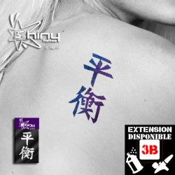 Pochoir Tatouage Temporaire SE Chinois 010